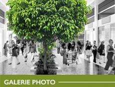 Tempo centre Leclerc Pau Photos