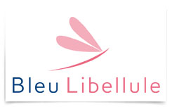 Bleu Libellule - Centre Tempo Leclerc de Pau